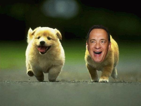 Tom Hanks is an animal. | Blogfwends
